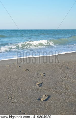 Child Barefoot Footprints In Sand On Beach