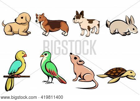 Vector Illustration Cartoon Of Eight Different Pet Animals With Puppy Dog Rabbit Parrot Bird Mouse A