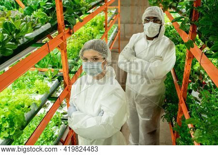 Above view of confident young multi-ethnic greenhouse employees in workwear and mask standing with crossed arms between shelves of vertical farm