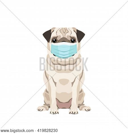Vector Portrait Of A Pug Wearing Protective Face Mask Isolated On White Background