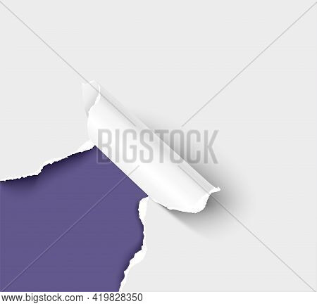 Ripped Corner Of Paper Realistic Vector Illustration