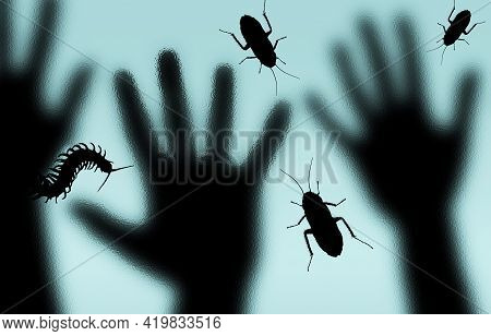 Cockroaches And A Millipede Are Seen Crawling On A Glass Shower Door As Human Hands Are Seen On The