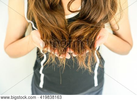 Cropped Shot View Of Woman Holding Her Damaged Split Ended Hair (focus At Ends Hair). Hair Damage Is