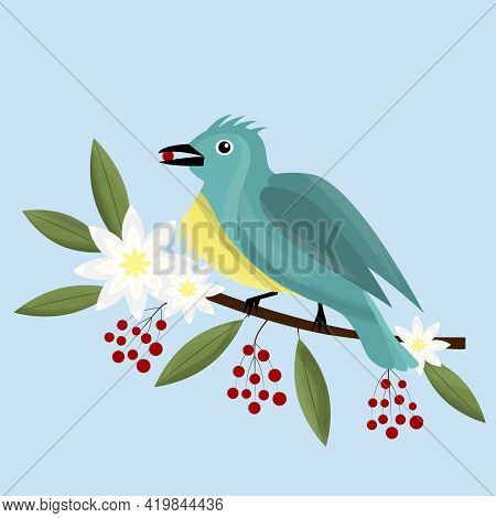 Little Beautiful Bird - Vector Full Color Picture. Bird Is Sitting On A Flowering Branch. Spring Bra