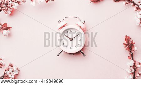 Spring Border, Spring Blossom And April Floral Nature With Alarm Clock On Pink Background. Branches