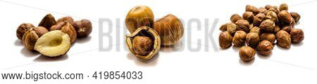 Collection Hazelnut Isolated On White Background Cut Out