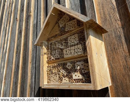 Insect Hotel (bug Hotel Or Insect House) In An Alpine Forest On The Slopes Of The Swiss Mountain Mas