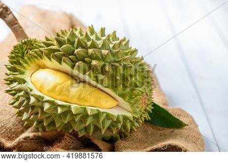 Chani Kai Durian Or Durio Zibthinus Murray On Sack, Chani Kai Durian Have A Soft Texture, Sweet And