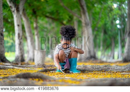 African Little Girl Exploring In The Woods And Looking For Insects, Child Playing In The Forest With