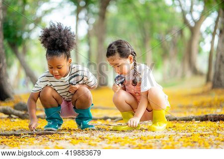 Two Little Girl Exploring In The Woods And Looking For Insects, Child Playing In The Forest With Mag