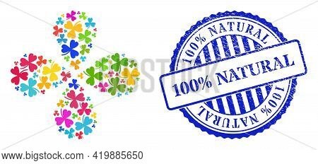 Clover Leaf Multi Colored Explosion Flower With Four Petals, And Blue Round 100 Percent Natural Text