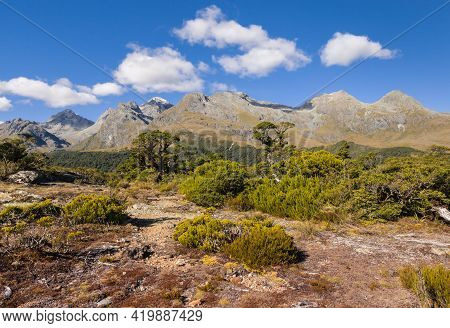 Humboldt Mountains From Key Summit Track In Fiordland National Park, New Zealand