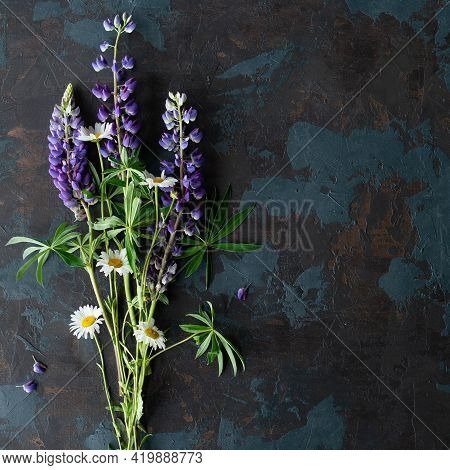 Wild Flowers Violet Lupin Lupinus Albus With Chamomile On A Black Background. Top View, Flat Lay. Mo