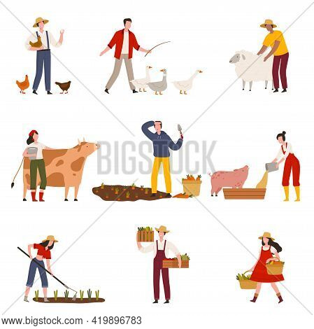 Farmers Or Agricultural Workers Cultivating Plants, Feeding Livestock And Gathering Crops Vector Ill