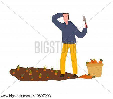 Man Farmer Gathering Ripe Carrot From Garden Bed Vector Illustration