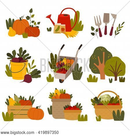 Husbandry And Farming With Crate And Wicker Basket Full Of Ripe Vegetables And Garden Tools Vector S