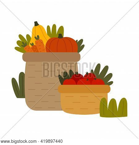 Ripe Vegetables Rested In Basket As Seasonal Harvesting And Yield Vector Illustration