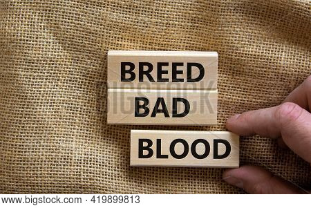 Breed Bad Blood Symbol. Businessman Holds Wooden Block With Words 'breed Bad Blood'. Beautiful Canva