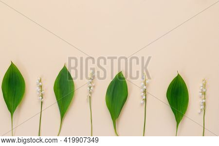 Yellow Background With White Delicate Lily Of The Valley Flowers For Mother's Day Card. Modern Minim