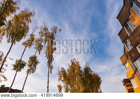 Plane In The Blue Sky Against The Background Of Houses And Tall Birches. A Bright Sunset And A Lusci