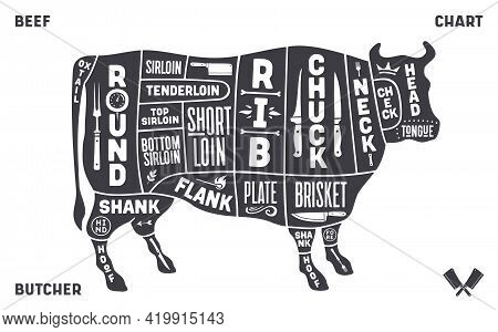 Cow, Beef. Scheme, Diagram, Chart Beef, Butcher Guide. Vintage Retro Print, Art Typography, Tag, Lab