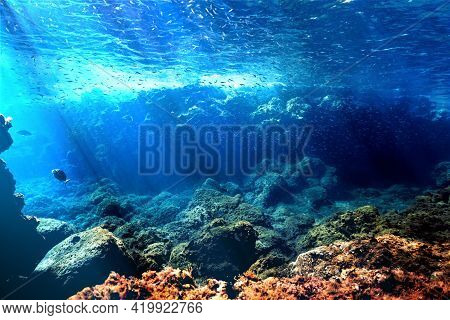 Beautiful And Amazing Rays Of Light In Underwater Landscape. Underwater Photo From A Scuba Dive In C