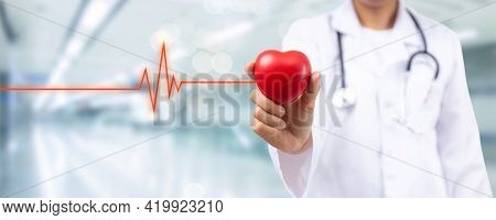 Close Up Hand Of Doctor Holding Red Heart For Heart Disease Hospital Room For Health Insurance  Serv