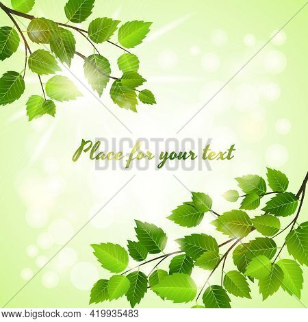 Fresh Green Background With Spring Leaves In Two Opposing Corners Over A Boheh Of Sparkling Sunlight