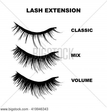 Eyelashes Mapping Beauty Business Illustration. Lashes Extension Art. Different Shapes - Classic, Vo