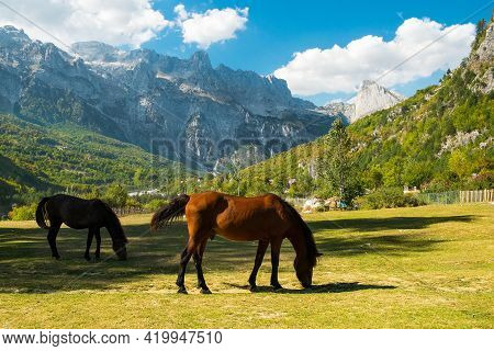 Beautiful Views From The Theth Village.  Grazing Horses Among Beautiful Mountains. Theth National Pa