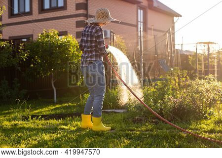 Woman Gardener In Work Clothes Watering The Beds In Her Vegetable Garden On Sunny Warm Summer Day. C