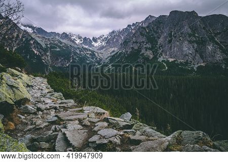 Mountain Setting With Coniferous Trees And Majestic Mountains. Beautiful Wild Nature. Stony Hiking T