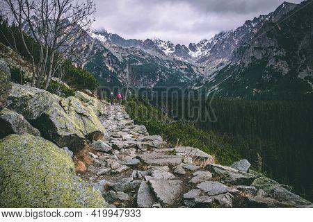 Stony Hiking Trail Around Forest To Mountains. High Tatras, Slovakia. Photo On The Theme Wildlife, M