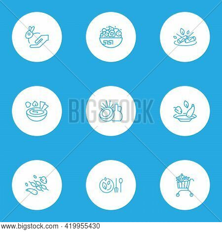 Vegetarianism Icons Line Style Set With Coconut Oil, Spring Rolls, Animal Care And Other Vegetarian