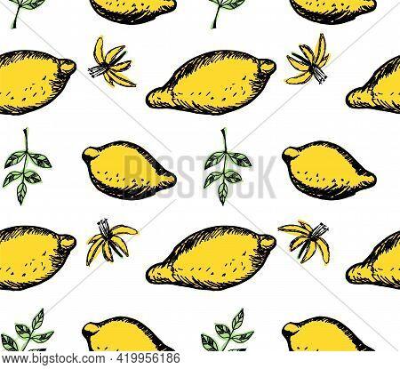 Lemon Seamless Pattern, Summer Fruit Design. Lemons, Leaves And Flowers. Hand Drawn Sketch Vector Il