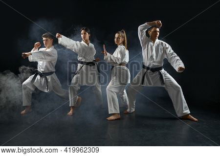 Karate fighters in kimono poses in combat stances