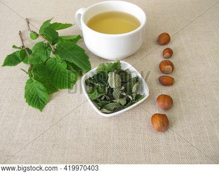 A Cup Of Hazel Leaf Tea From Dried Hazelnut Leaves