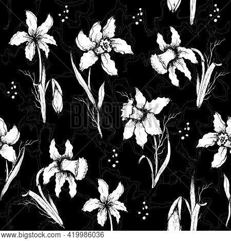 Seamless Pattern Of Monochrome Colors Close-up. Narcissus Flowers (primroses) In The Style Of Realis