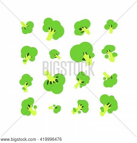 Set Of Twelve Vector Green Broccoli Isolated On White Background