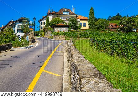 Picturesque Orderly Vineyards And Wonderful Gardens. Street View With Green Vineyards And Cute House