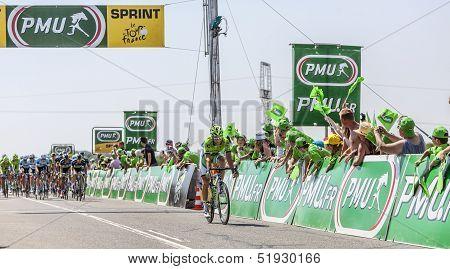 The Cyclist Fabio Sabatini