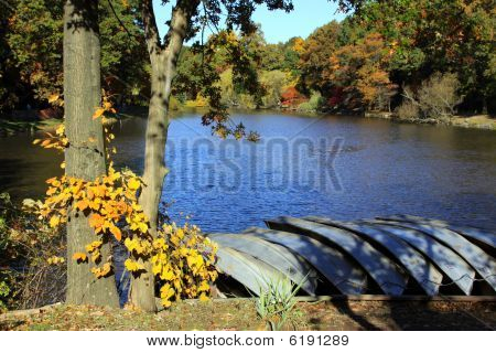 Autumn by the lake.