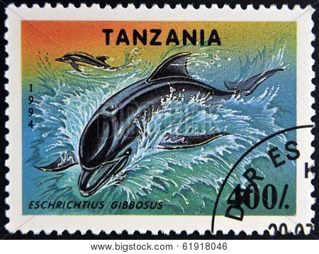A stamp printed in Tanzania showing California Gray Whale