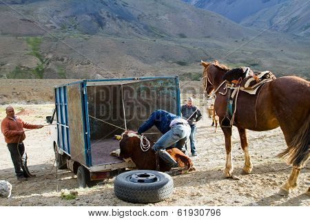 Huaso (Chilean cowboys)
