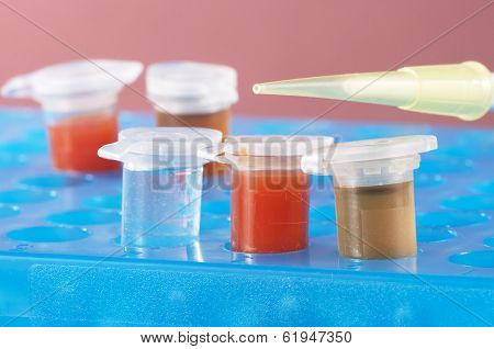 Test Tubes With Different Colored Chemicals In A Plastic Support