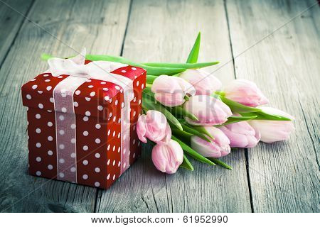 Beautiful Tulips With Red Polka-dot Gift Box. Happy Mothers Day, Romantic Still Life, Fresh Flowers.