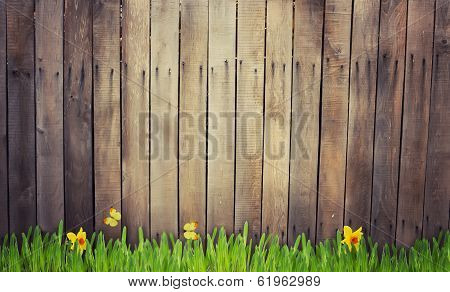 Old Wooden Fence And Grass