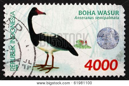 Postage Stamp Indonesia 1998 Magpie Goose, Waterbird