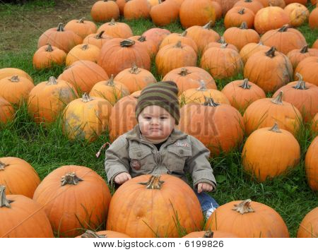 Cute boy with pumpkins
