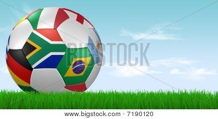 2010 Soccer Ball In Grass